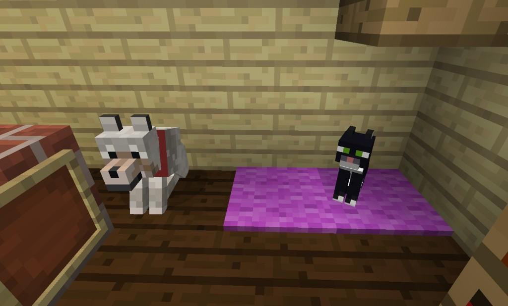 Koira ja kissa huoneessa.